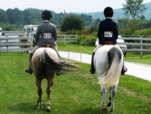 Summer days, horse shows, coming soon....